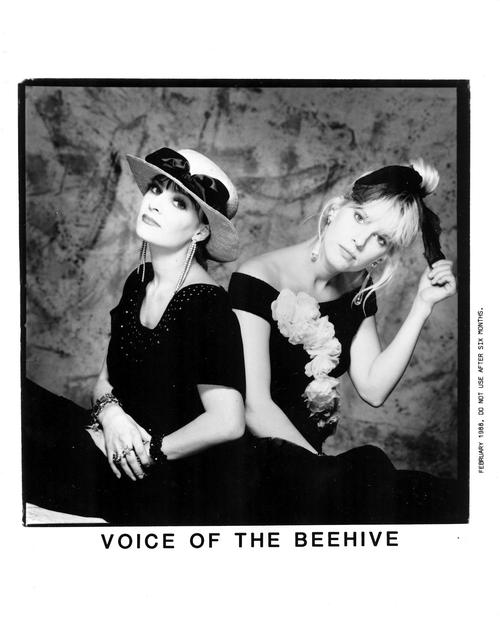 Фото Voice Of The Beehive