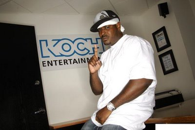 Фото Sheek Louch