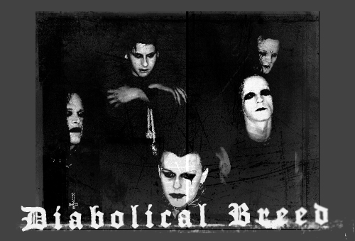 Фото Diabolical Breed
